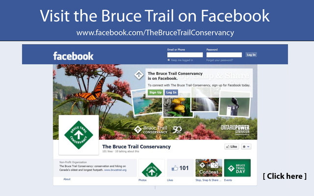 Visit_the_btc_on_facebook_featured