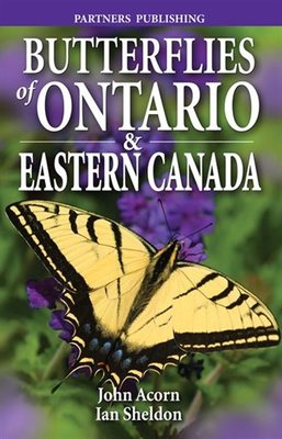 Butterflies of ontario and eastern canada